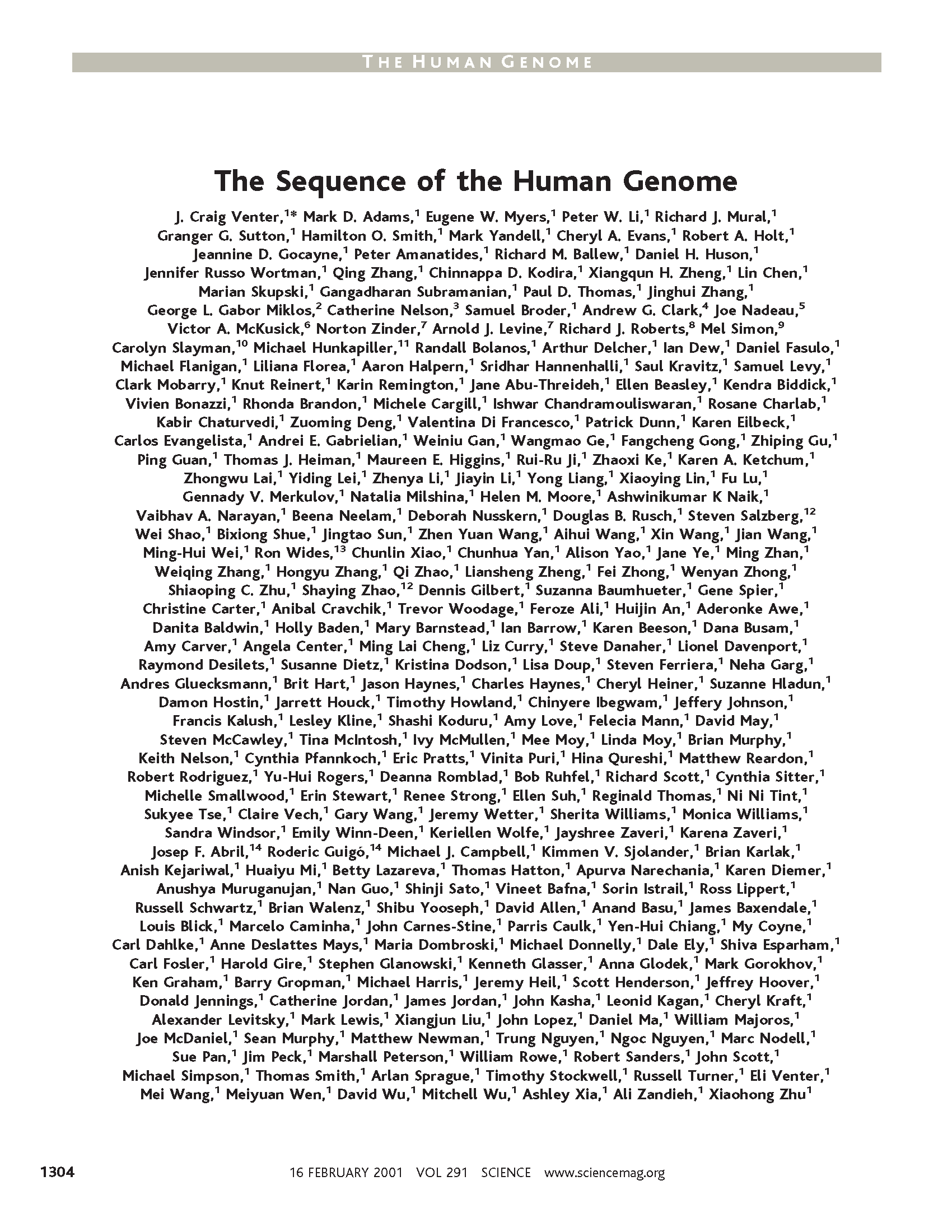 example word essay best ideas cover letter bank sample branch example word essay best ideas favorite word essay reportwebfc favorite word essay example wartortle that handy